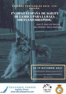 COPA DE ESPAÑA DEL PASTOR DE SHETLANDSHEEPDOG Y PRUEBAS PUNTUABLES PARA EL C.E. RSCE 2022 @ Agility Pinto | Pinto | Comunidad de Madrid | España